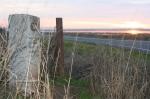 Stone mileage marker hidden in rice fields