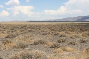 Immigrant Trail  Nevada Desert