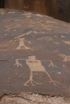 Firgure Pictograph