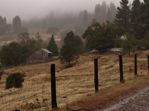 The Old Pendola Ranch